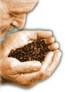 amorecaffe
